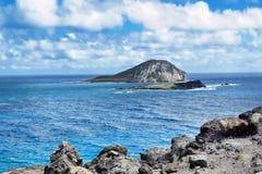 Big Plue Hawaii Royalty Free Stock Photos