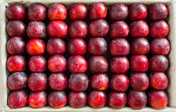 Big plums displayed for sale Stock Photos