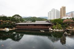 A big pond with koi fishes. Inside Nan Lian Garden Stock Images