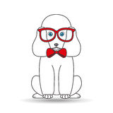 Big poodle sitting with red glasses Royalty Free Stock Images