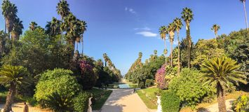 Big pool and trees in Botanical Garden of Hamma panorama in Algiers. Big pool and trees in Botanical Garden of Hamma in Algiers royalty free stock photography