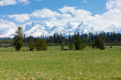 Big Prairie and Mountain Range, Montana. Big Prairie in Glacier National Park and Mountains Royalty Free Stock Images