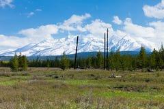 Big Prairie and Mountain Range, Montana. Big Prairie in Glacier National Park and Mountains Stock Photos