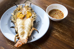 Big prawn on dish Stock Images