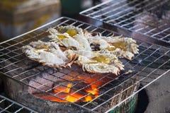 Big prawn fire grill Stock Photos
