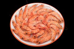 Big prawns. Boiled big prawns stock photos