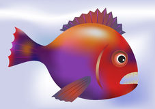 Big predatory fish - vector Royalty Free Stock Photo