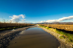 Big puddle in the country Royalty Free Stock Photo
