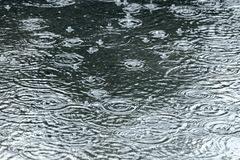 Big puddle with ripples and bubbles during heavy rain Royalty Free Stock Photography