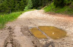 Big puddle on rut road after rain in forest Royalty Free Stock Photo