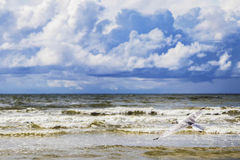 Big puffy clouds above sea Royalty Free Stock Photography