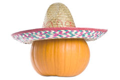 Big Pumpkin Stock Image