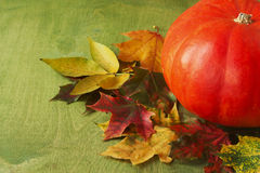 Big pumpkin and autumn leaves Royalty Free Stock Photography