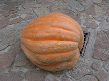 Big Pumpkin in the Castle Courtyard Royalty Free Stock Photo