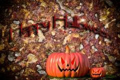 The big pumpkin in Halloween. Stock Photos