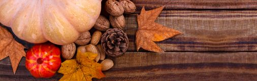 Big pumpkin and nuts Stock Images