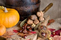 Big pumpkin small nuts stock photography