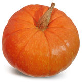 Big pumpkin on a white background Stock Photos