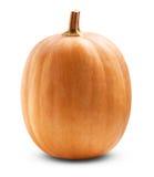 Big pumpkin Stock Images