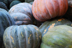 Big pumpkins Royalty Free Stock Image