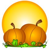 Big Pumpkins Sun Clipart Stock Photos