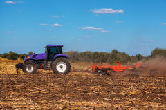 Big purple tractor plows the field and removes the remains of previously mown sunflower. Part of the cultivator, steel, round discs in a row close-up. Work Royalty Free Stock Image