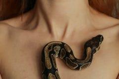 Beautiful woman with python, closeup stock images