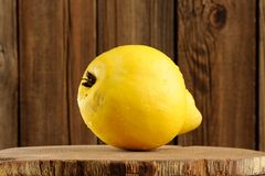 Big quince on wooden board closeup macro Royalty Free Stock Images