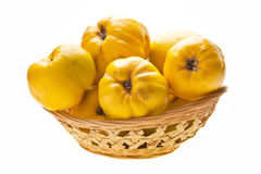 Big Quinces In Small Basket Royalty Free Stock Image