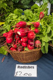 Big Radishes Royalty Free Stock Photo