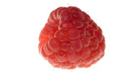 Big raspberry Stock Photo