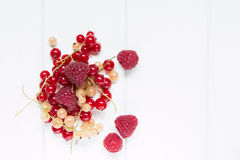 Big raspberry and small currant Royalty Free Stock Photos