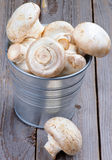 Big Raw Champignons Stock Photos