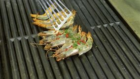 Big raw shrimp shot close-up slow motion roasted on the grill stock footage