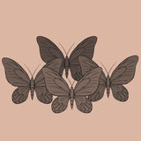 Big realistic collection of colorful butterflies.  Summer flying insects set for greeting cards and  scrapbook. Stock Image