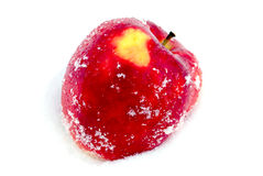big red apple on a snow Royalty Free Stock Photo