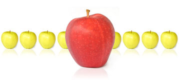 Big Red Apple Standing with Green Apples. A red apple is standing in the foreground while green apples are in the background on an isolated background. Use it to Stock Photos