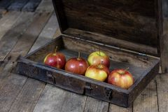 Big red apples in a dark wooden box. Wooden crate and apples on. A wooden table in the kitchen. Black background Royalty Free Stock Photos