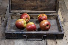 Big red apples in a dark wooden box. Wooden crate and apples on. A wooden table in the kitchen. Black background Royalty Free Stock Photo