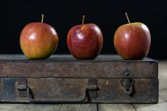 Big red apples in a dark wooden box. Wooden crate and apples on. A wooden table in the kitchen. Black background Stock Image