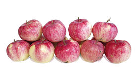Big red apples isolated Stock Images