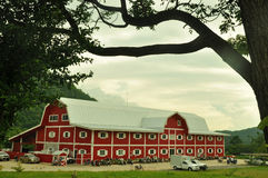 Big red barn with mountain Stock Photos