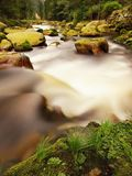 Big red boulders in foamy water of mountain river in forest. Light blurred water with reflections. Royalty Free Stock Image