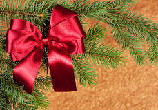 Big red bow on fir tree branch Stock Photos