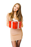 The  big red gift box. Royalty Free Stock Photos