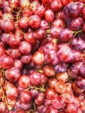 Big red grapes royalty free stock photography