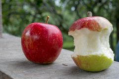 Big red and green apple was bite. By human for fruit stock images