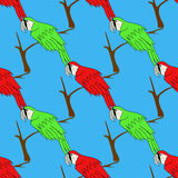 Big Red and Green Parrot . Bird Pattern Stock Image