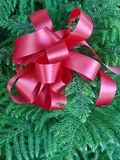 Big red holiday bow Stock Images