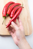 Big Red hot chili peppers on Hand Stock Photography